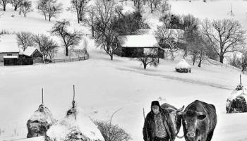 Zimi se pristupa sa izrazitim respektom